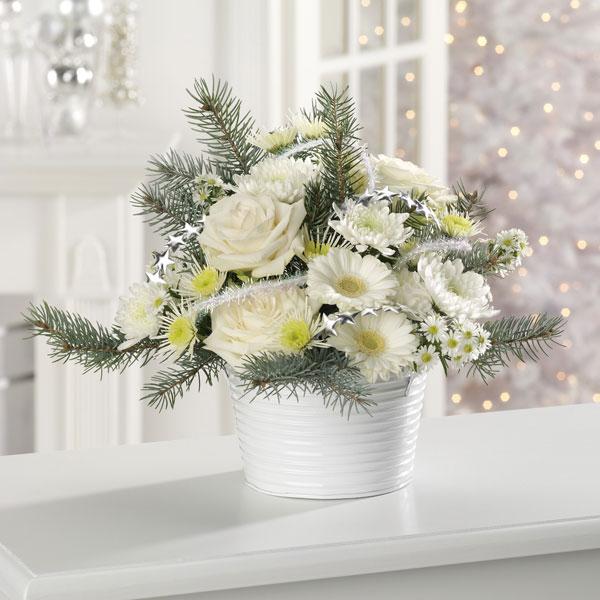 snow_daisies7