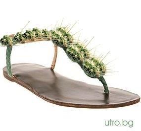 sandals_kaktus