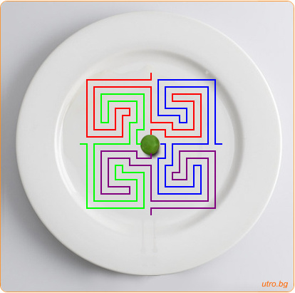 лабиринт в чиния