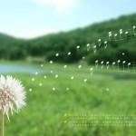 Обичащите вятъра