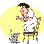 Ветеринарни неволи