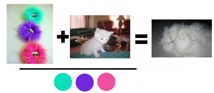 креатив котки