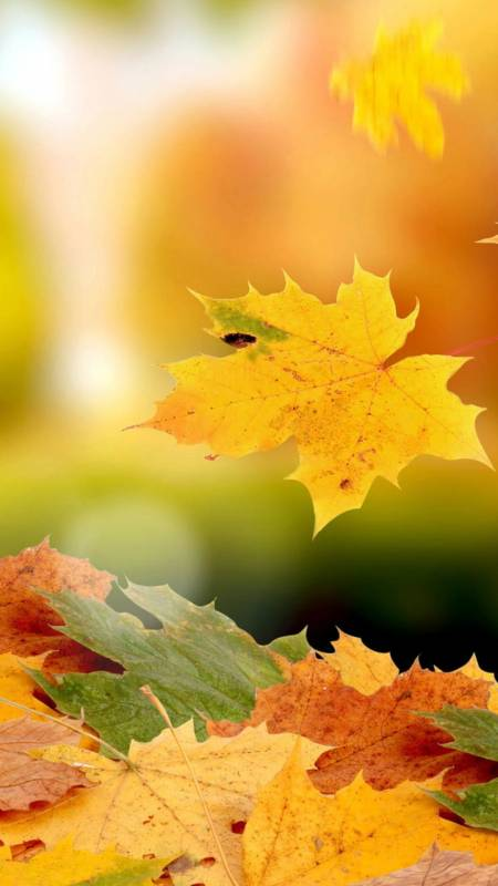 есенни картинки за смартфон