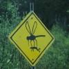 Внимание комари!