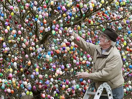 дърво с яйца
