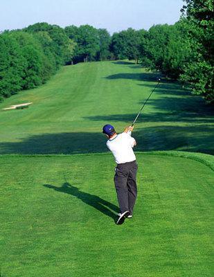 Една слънчева неделна утрин две жени отишли да поиграят голф