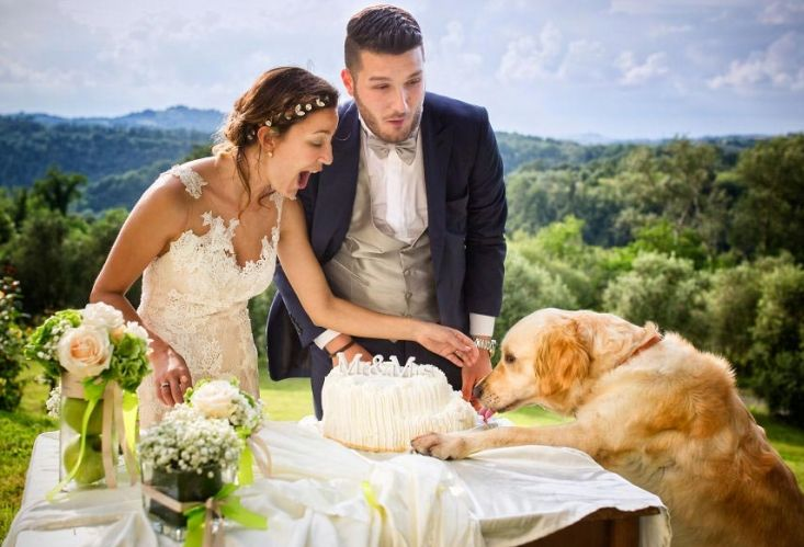 Незабравими сватбени снимки и оригинални сватбени фотографии