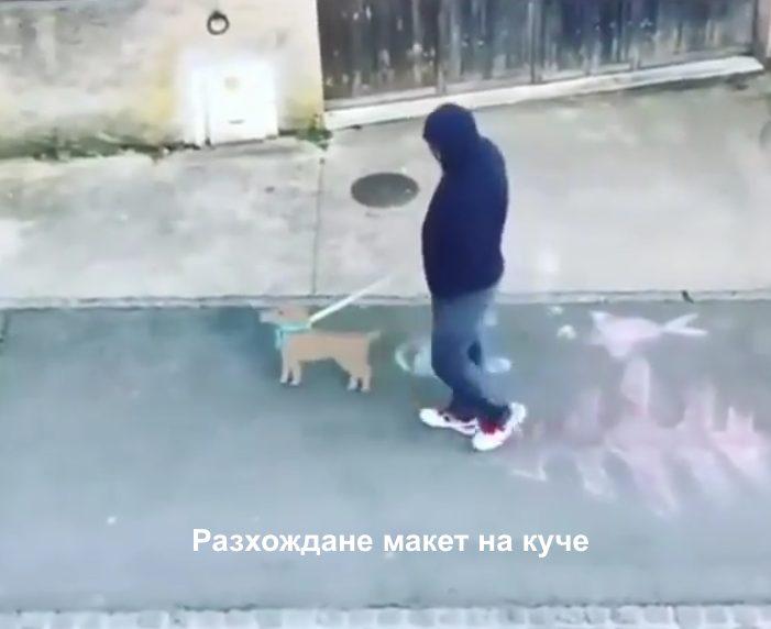 карантина разхождане на куче