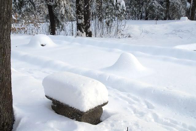 winterzen