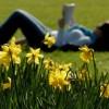 Без пролетна умора
