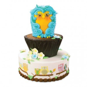 DI_Owl-top-&-Owl-DP-cake