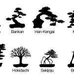Бонсай – дърво в саксия