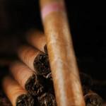 Пурите – символ на успех и безвремие