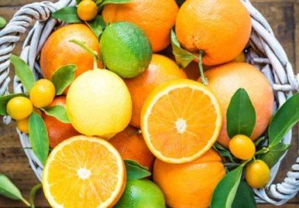 Цитрусови плодове, портокал, лимон, мандарина