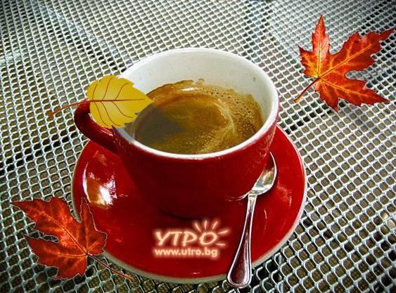 Кафе - есен