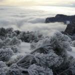 Зима от орлов поглед