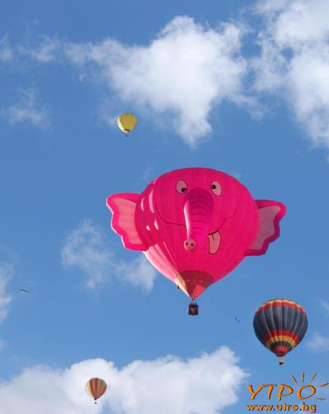 балон розов слон