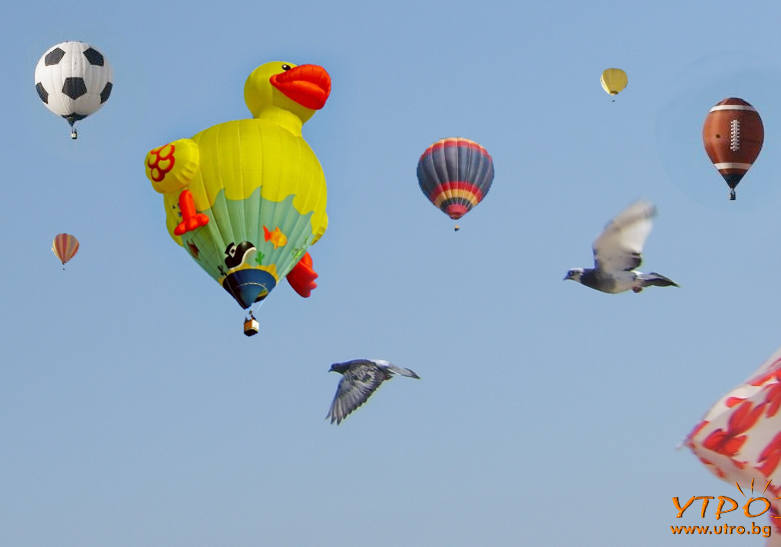 забавни балони