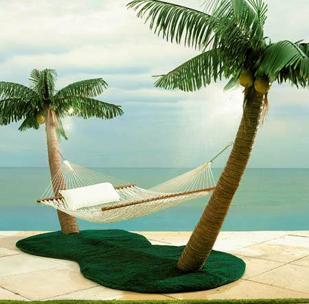 palm-tree-hammock