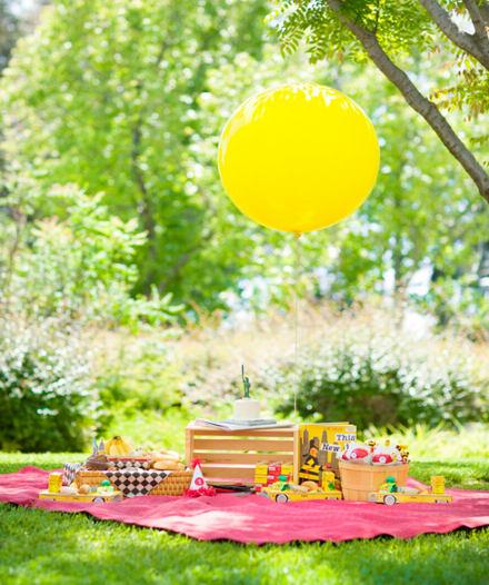 piknik-party