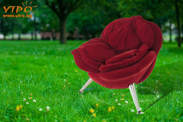 стол червена роза