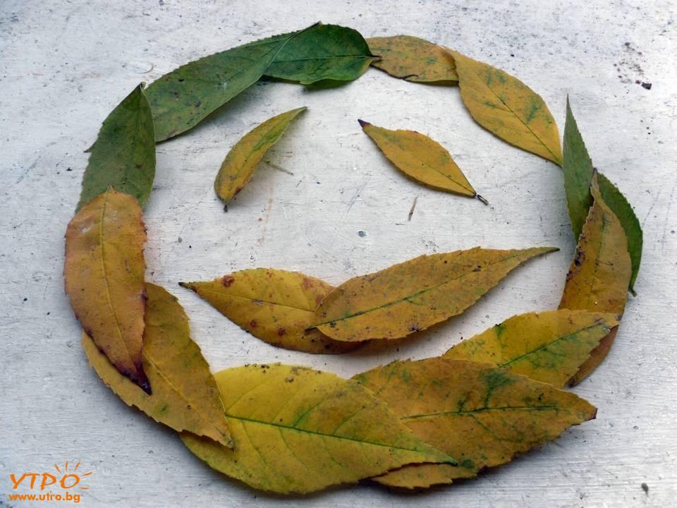 есенни емоции