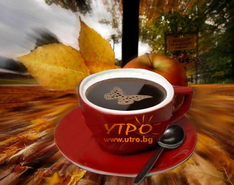 вълшебно кафе