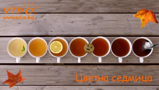 цветове на чая