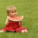 Световен ден на динята – 3 август