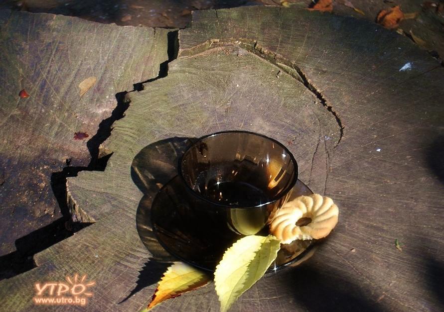 Есеннен чай