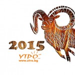 2015 година на овцата