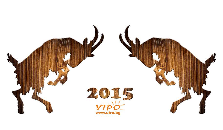 2015 година на козата
