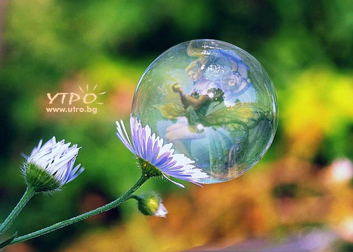 фея в капчица роса