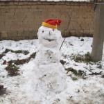 Снежен бисер