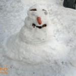 Моя снежен човек