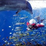 Морските приключения на Дядо Коледа