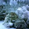 Дзен размисли в снега