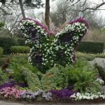 Живи скулптури в градината