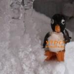 вкусен пингвин