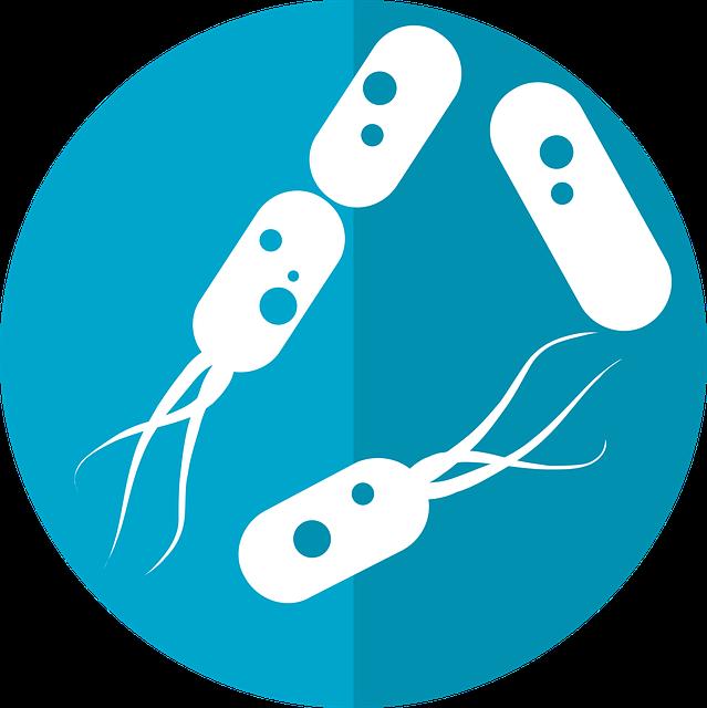 Бактерии, вируси, микроби, микроорганизми