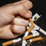 Ден без тютюнев дим
