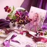 Вълшебство за  прекрасни спомени
