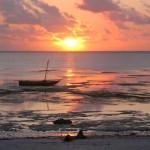 Утро край морето