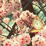 Намери време да …