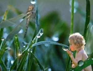 грижа за природата