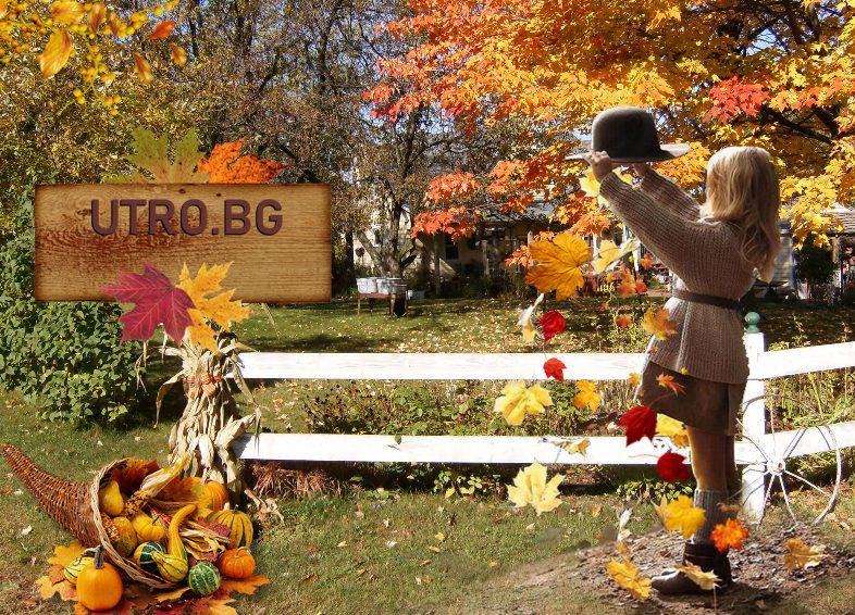 Топла златна есен рог на изобилието